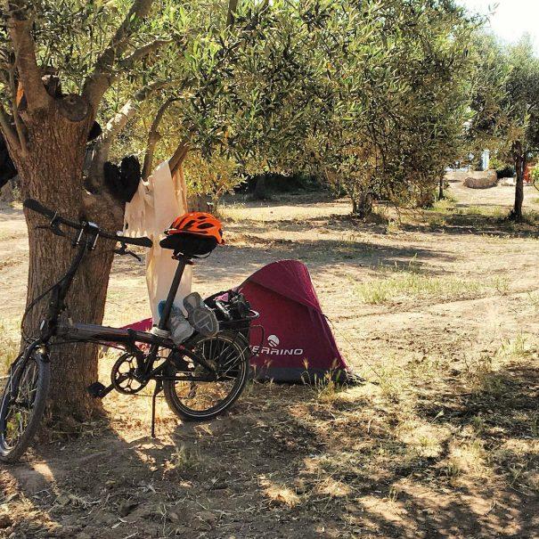 Çadır | Sincap Kamp