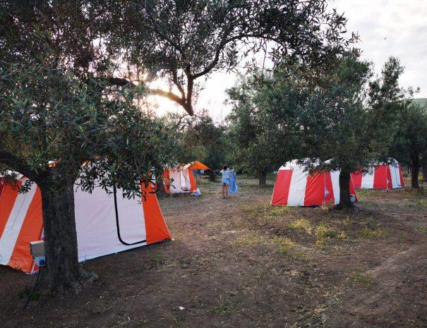 Kiralık Çadır - En Konforlu Çadır | Sincap Kamp